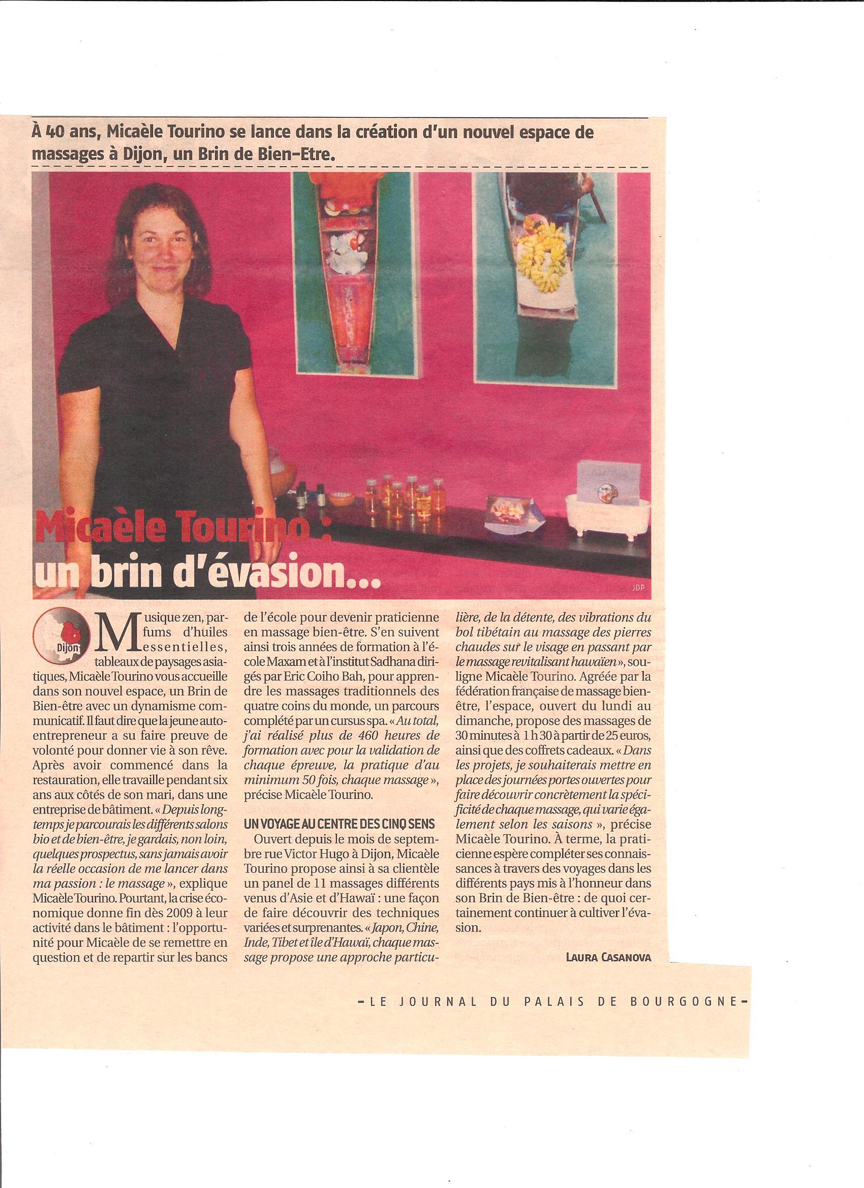 Journal du Palais 2013