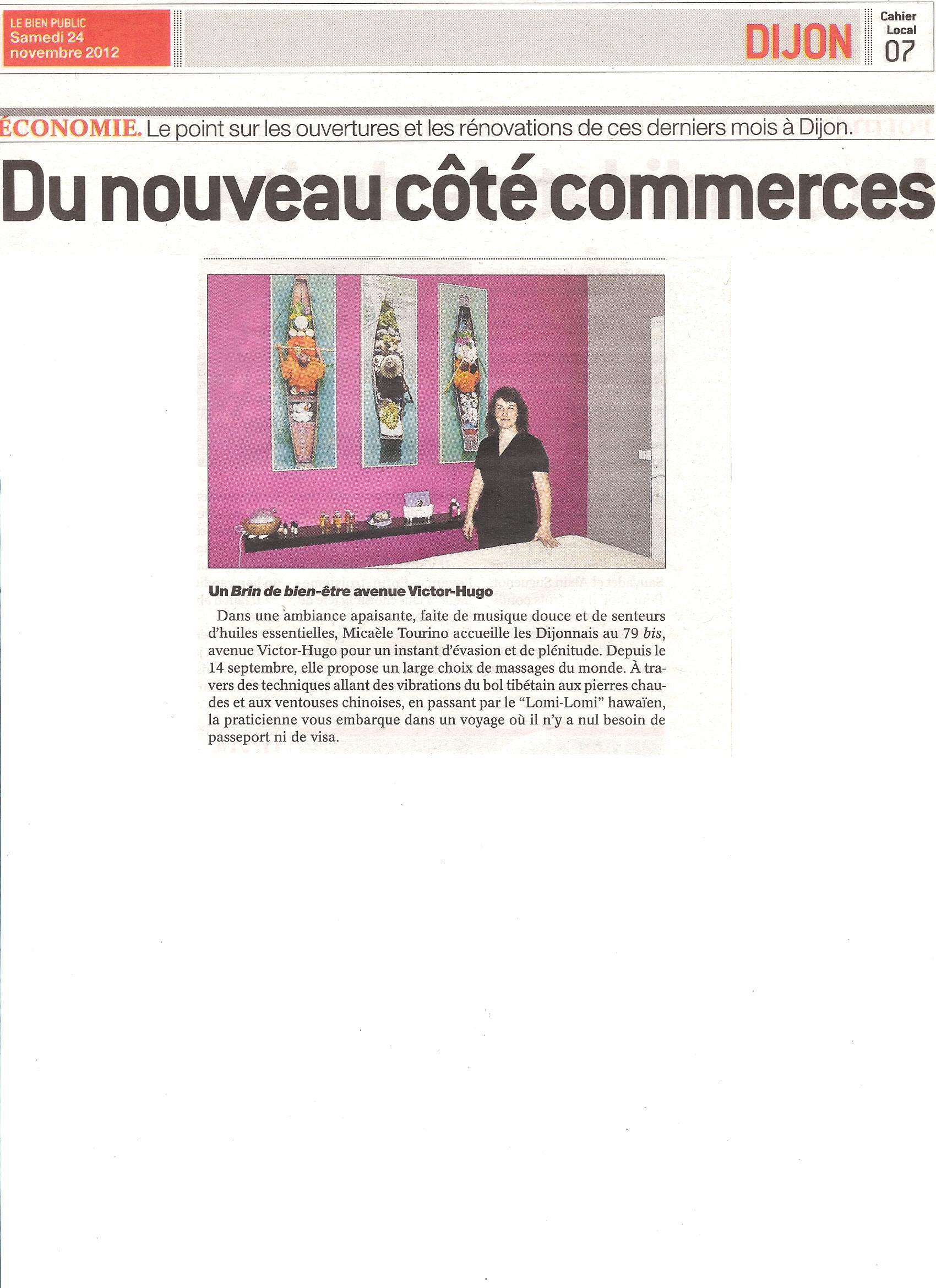 Journal du Palais du 5 au 11 novembre 2012